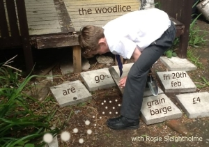 Woodlice are go! poster